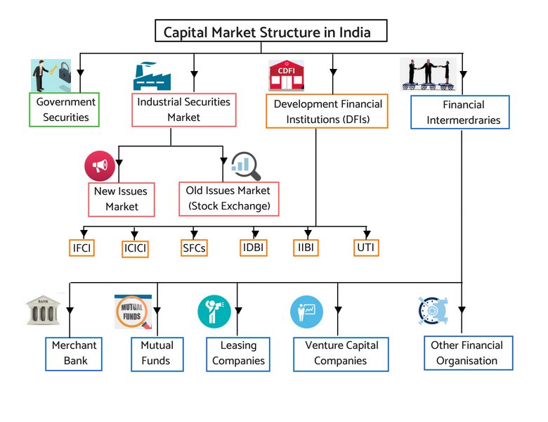 Market Participants - Capital market Structure in India